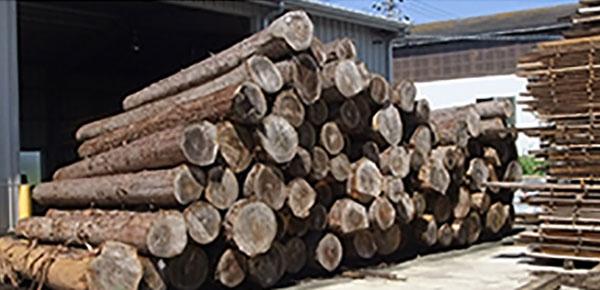 長く暮らして頂くための国産木材使用